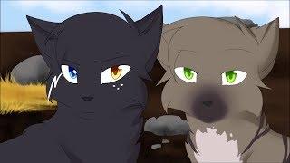 Коты воители клип / Энки, Айла и  Айка