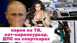 Жесткое ПОРНО на НТВ, КОТ-НАРКОКУРЬЕР СБЕЖАЛ, а Владимир ПУТИН на Ближнем Востоке