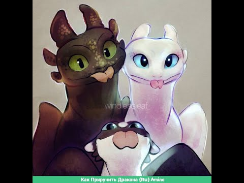 Toothless And Light Fury Edit - Survivors(for...)