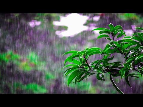 Sonidos de Lluvia para Descansar, Estudiar, Meditar HD 10 Horas