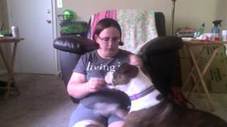 Service Dog Task- Deep Pressure Therapy
