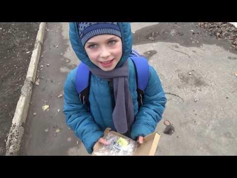 MP3 плеер нашел хозяина)