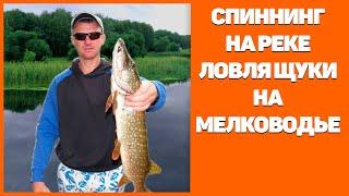 Ловля щуки на мелководье р. Северский Донец.