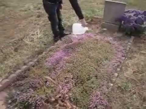 Gravesite Decoration Ideas Ra Mo Ba Noi Youtube
