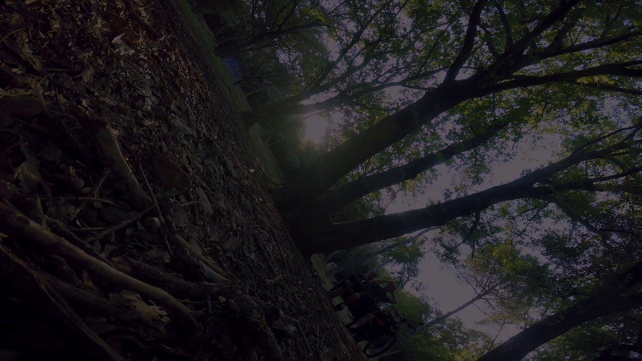 Betaflight 4.2 - Ultimate stickcam overlay - FPV freestyle фотки