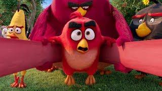 """Это будет больно! - """"Angry Birds"""" отрывок из фильма"""