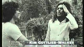 Who Killed Bob Marley Documentary - Strange Universe Documentary