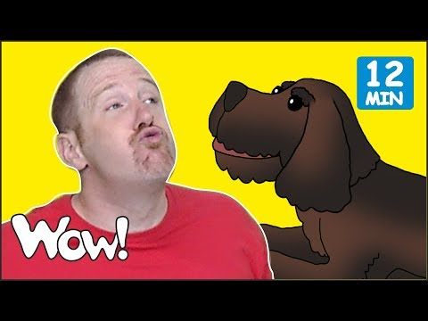 Mr. Sun, Mr Golden Sun + MORE Stories and Songs for Kids from Steve and Maggie   Wow English TV