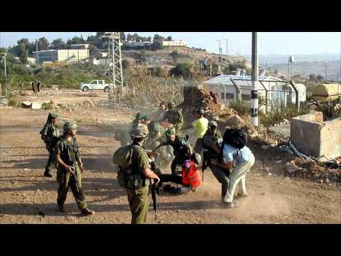 pray-for-the-peace-of-jerusalem--sarah-forrestal