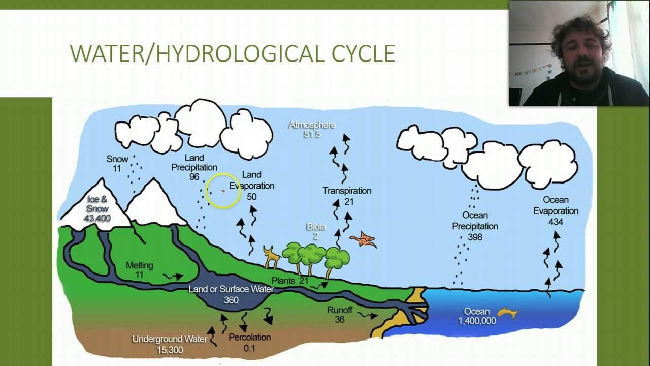 Ecology 03 Natural Cycles Water Cycle