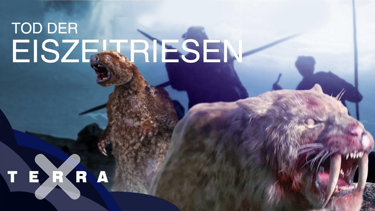 Download Fünf Fakten zum Ende der Megafauna | Terra X