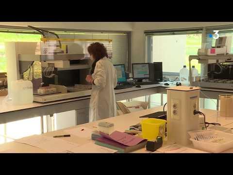 Dépistage du Coronavirus: le laboratoire vétérinaire de Pixéricourt en renfort du CHRU de Nancy