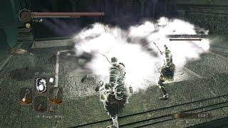 Dark Souls 2 - Cosplay Elements Trolling 3