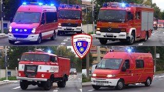 🚨 ELW + LF 16/12 + TLF 16 + MZF Feuerwehr Zwickau-Auerbach