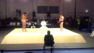 Полуфинал Кубок Европы по сумо Кучутен(Тыва) vs Рота