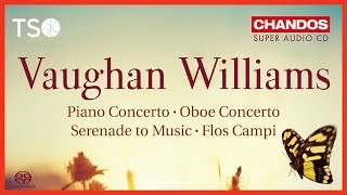 Vaughan Williams: Piano Concerto in C: i. Toccata. Allegro moderato (Excerpt) / Peter Oundjian · TSO