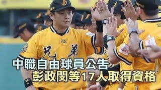 中華職棒聯盟昨公告今年度取得自由球員資格17人,以統一獅7人最多、中信...