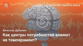 Мозговые центры потребностей и эмоций — Вячеслав Дубынин