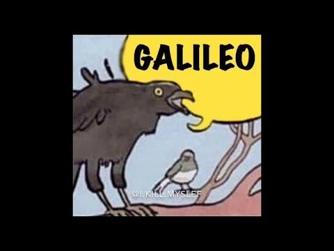 Bohemian Rhapsody Bird Meme