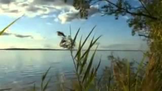 Евгений Чужой   Кострома flv