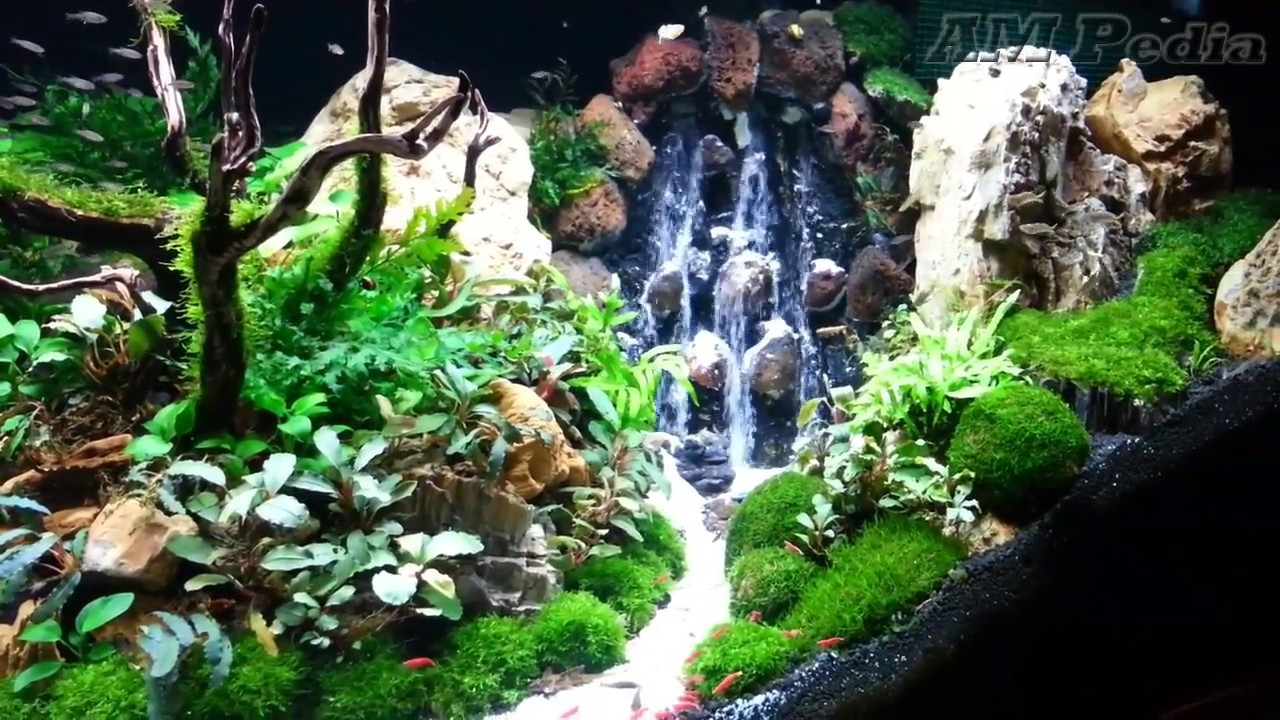 Most Beautiful Idea Waterfall Aquascape #2 - YouTube