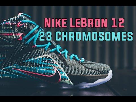 buy online 4ce81 9a27f Nike LeBron 12-23 Chromosomes