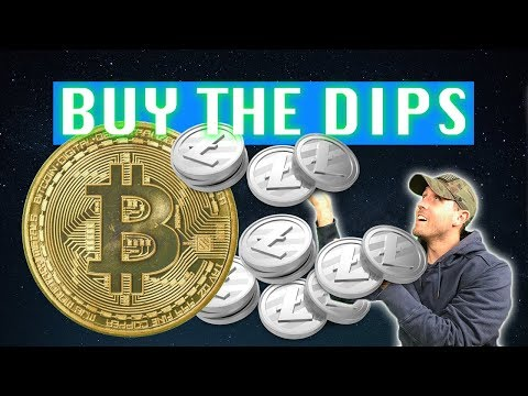 How To Buy Litecoin & Bitcoin Dips For Gains - Add LTC/BTC Portfolio