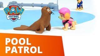 PAW Patrol | Pool Patrol | Toy Episode | PAW Patrol Official & Friends