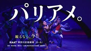 劇団四季:パリのアメリカ人:横浜公演CM