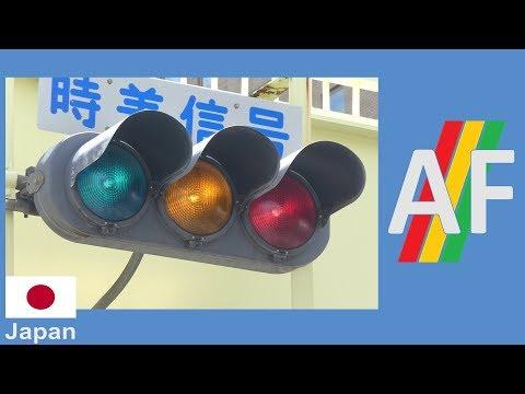 Koito Industries Vehicle Signal with Fresnel Lenses (Heisei 7 (1995))