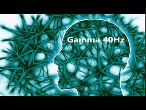 40 Hz Gamma - Pure Tone Binaural Beat - Brain's Operating System