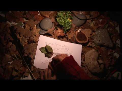 Magic Wood by Druyd - didgeridoo guitar vocals - music video