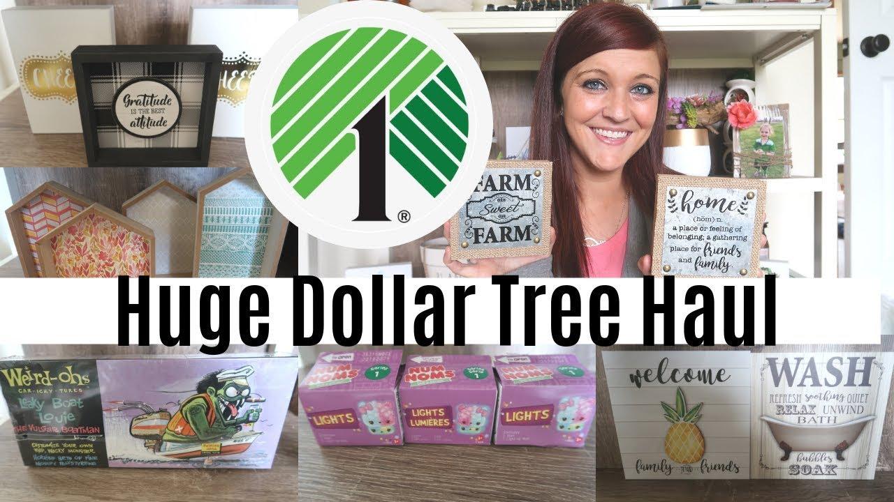 Huge Dollar Tree Haul May 2019 Tons Of New Items New