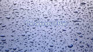 Repeat youtube video The Sounds of Windy Rain for Sleep (60 Minutes)