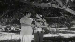 Anjhana Mizhikalil || College Girl || Malayalam Film Song
