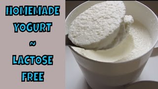 Homemade Yogurt ~ Lactose Free~ SCD Legal