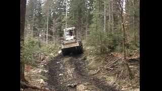 woody avg 2009