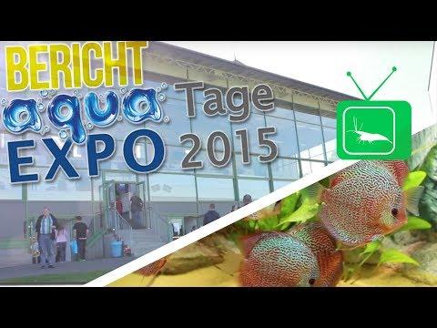 aqua-expo-tage-2015-|-messebericht-|-garnelentv