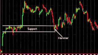 Forex Trading MT4 Tutorial How To Trade Candlesticks