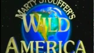 Abertura de América Selvagem (Wild America) - TV Cultura - Anos 90