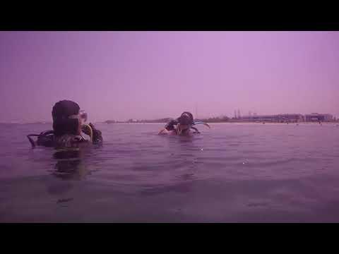 PADI Instructor Ola Khalaf & daughter Nora Khalaf diving in Dubai Jumeirah Sea