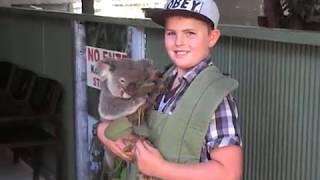 JAIDEN DAVERN age 9,  Cohuna Koala Park Western Australia, 15th Oct 2017
