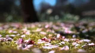 Jean Sibelius : Spring Song, Op.16