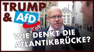 Atlantik-Brücke: Wie stehen Transatlantiker zu Donald Trump und der AfD?