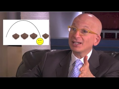 Seth Godin explains the More-is-Better Fallacy