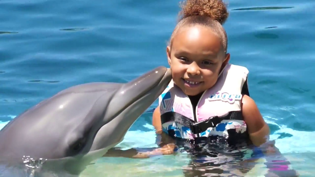 GIRL SWIMS WITH DOLPHIN | MARINE MAGIC | COFFS HARBOUR ...