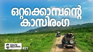 കാസിരംഗ ജീപ്പ് സഫാരി │Kaziranga National Park Jeep Safari, Rhinoceros │ Route Records Ep#21