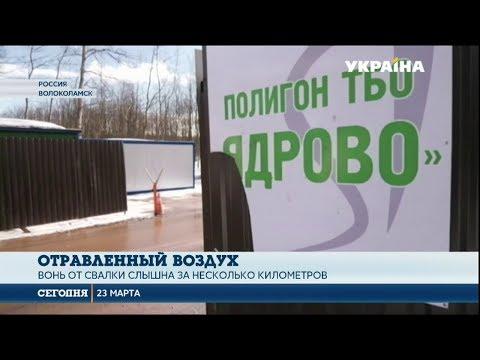 Смотреть Под Москвой избили чиновников онлайн