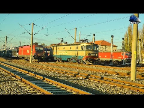 Trenuri & Activitate Froviara/Trains & Rail Activity in Gara Curtici Station - 11 November 2016