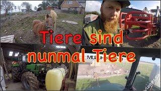 FarmVLOG#153 - Tiere sind nunmal Tiere